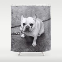french bulldog Shower Curtains featuring French Bulldog by Alev Takil