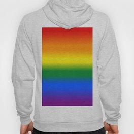 Rainbow Flag Pride Hoody
