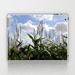 Maize Laptop & iPad Skin