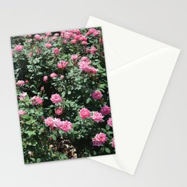 Pink Mini Roses and Eucalyptus Mint Green Leaves Stationery Cards