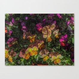 Violas on Table Canvas Print