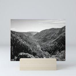 Black & White Arizona Mini Art Print