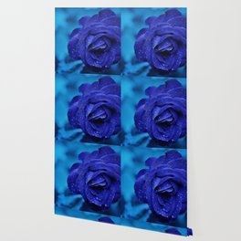 ROSE BLEU Wallpaper