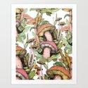 wild mushrooms by franciscomffonseca