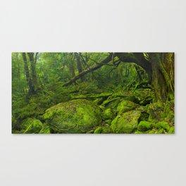 Lush rainforest along Shiratani Unsuikyo trail on Yakushima Island, Japan Canvas Print