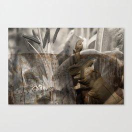 peek Canvas Print