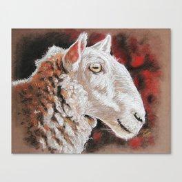 """Pastel Drawing """"Sheepish Grin"""" Canvas Print"""
