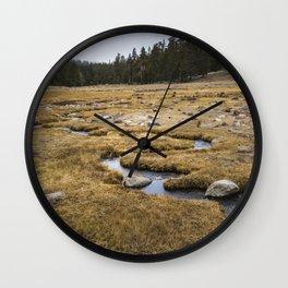 A little creek in a Big Meadow Wall Clock