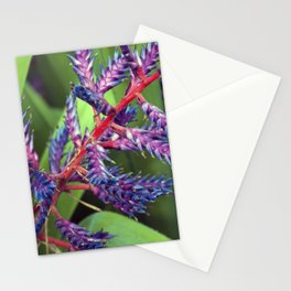 Longwood Gardens - Spring Series 73 Stationery Cards