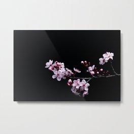 Flower Photography by David Brooke Martin Metal Print