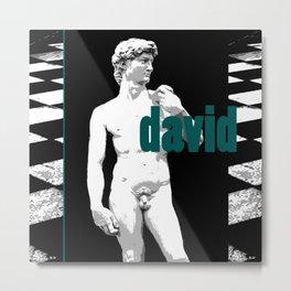 david eclectic ed  Metal Print
