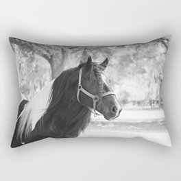 Stunning Gypsy Vanner Rectangular Pillow