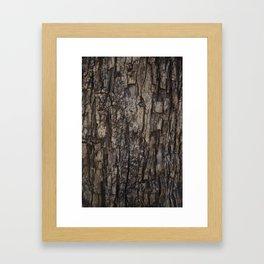 Bark VI Framed Art Print