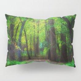 Fall Splendor 2 Pillow Sham