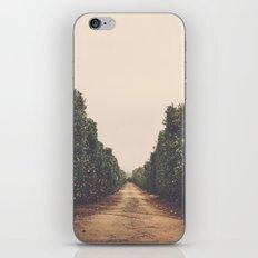 Vanish iPhone & iPod Skin