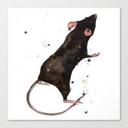 Velveteen Rat Canvas Print