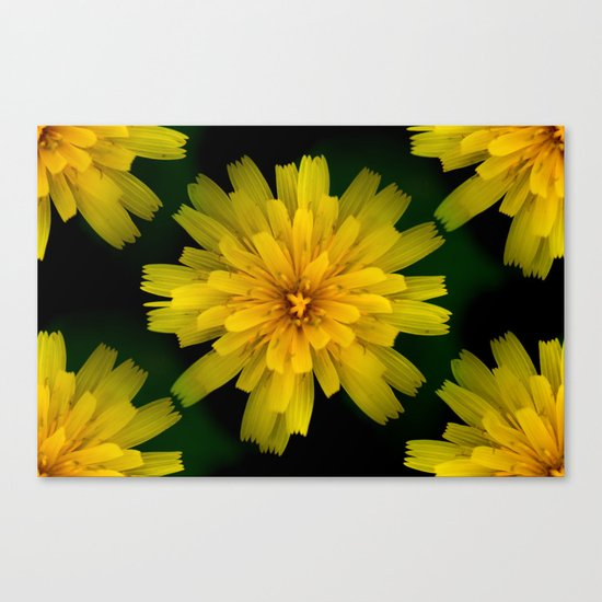 Yellow Natural Flowers On Black Background Canvas Print