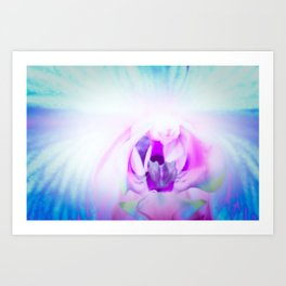 Blue Orchid I Art Print