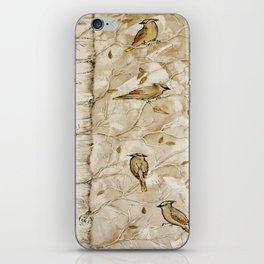 Cedar Waxwings in Birch Tree iPhone Skin