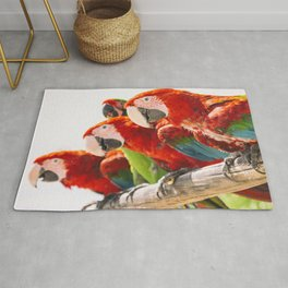Red macaws Rug