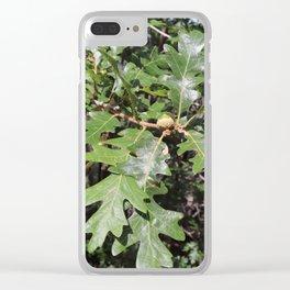 Acorns on an Oak Tree Clear iPhone Case