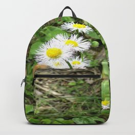 Walk Among The Faeries Backpack