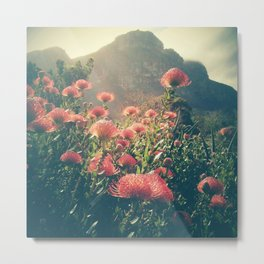 Kirstenbosch Sunshine Metal Print