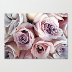The Palest Roses Canvas Print