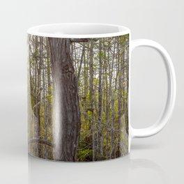Sunset in the Swamp Coffee Mug