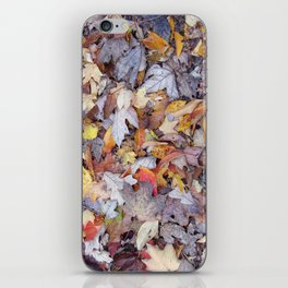 leaf litter menagerie iPhone Skin