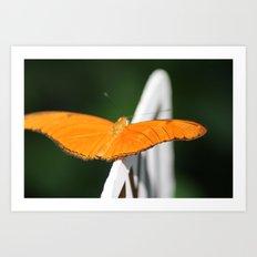 butterfly fly away Art Print