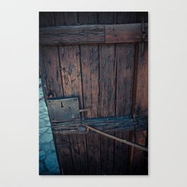 Door Canvas Print