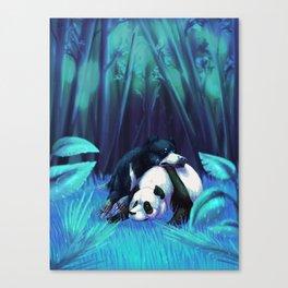 bers Canvas Print