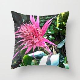 Natural Bromeliad Throw Pillow