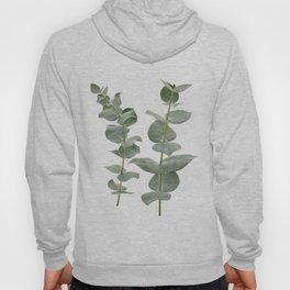 Eucalyptus Branches II Hoody