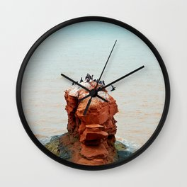 Cormorants on Red Sandstone Rock Wall Clock