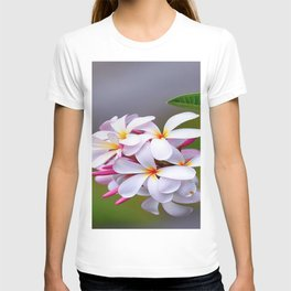 WHITE FRANGIPANI T-shirt