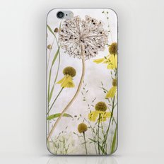 Alliums and Heleniums iPhone & iPod Skin