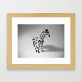 Zebraff #1 Framed Art Print