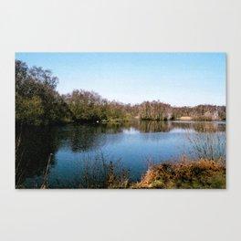 Holme Fen nature reserve  Canvas Print
