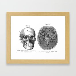 Front view of the head and lower surface of the brain Framed Art Print