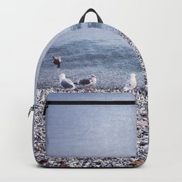Seagulls by the Shore Backpack