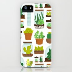 Succulent Collection iPhone (5, 5s) Slim Case