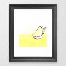 Sea Shell Framed Art Print