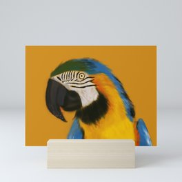 Snacking Macaw #Bird #Watercolor Mini Art Print