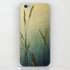 Wild and Free iPhone & iPod Skin