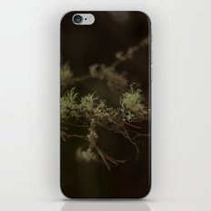 Tree Fuzz iPhone & iPod Skin