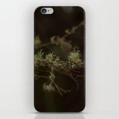 Tree Fuzz iPhone Skin