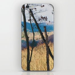 Mountain Shadows iPhone Skin