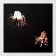 Jelly Canvas Print